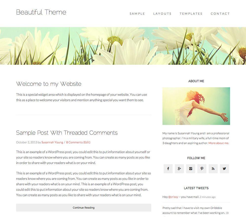 Beautiful Pro Theme for WordPress