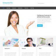 Enterprise Pro Theme
