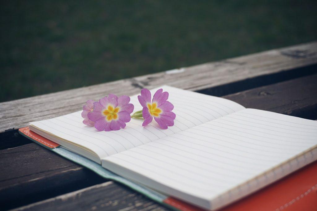 bench, flower, notebook