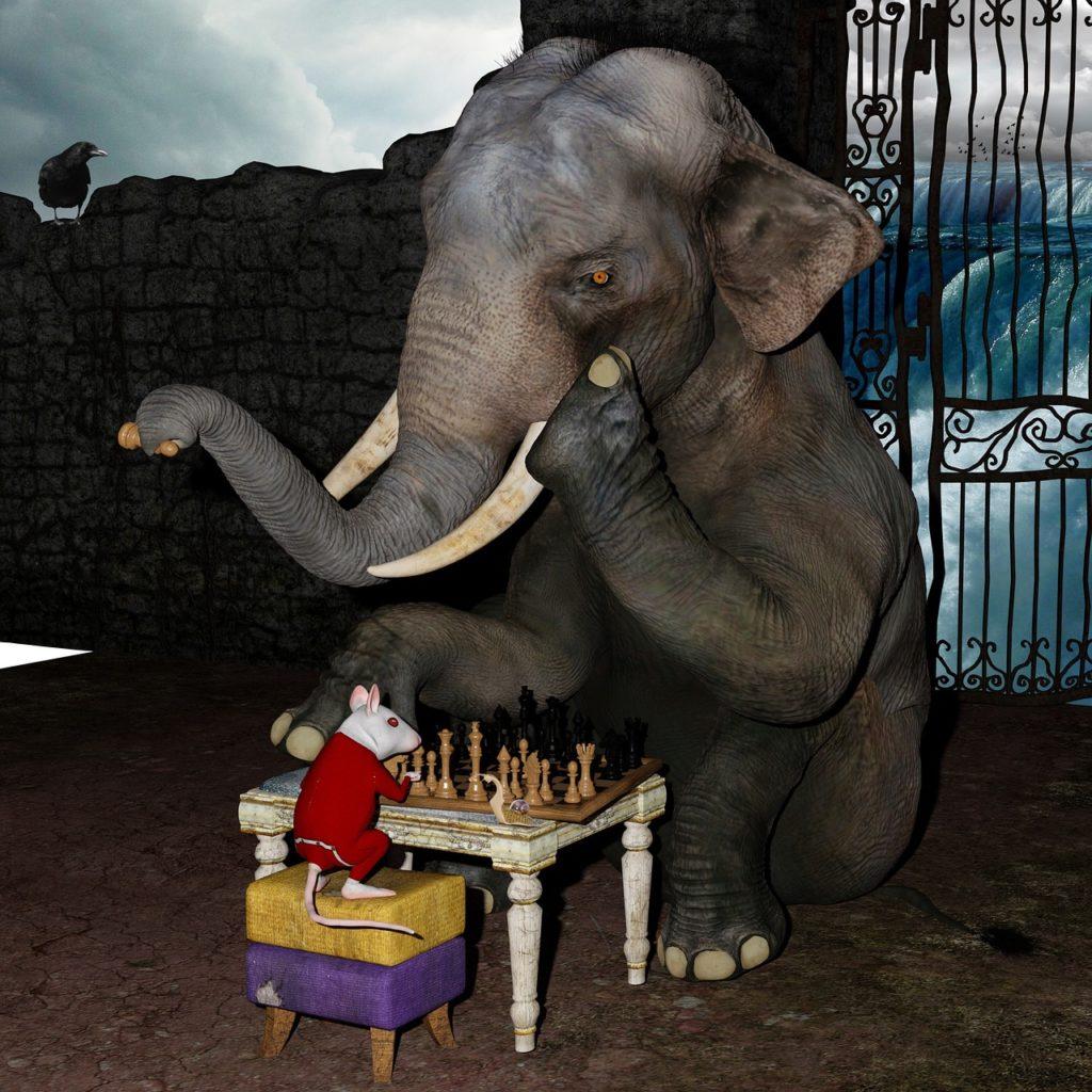 play chess, elephant, mouse-2647368.jpg